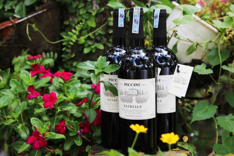 Rượu vang Ý - Piccini Patriale
