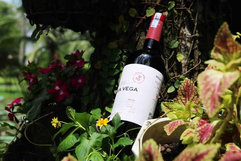 Rượu vang Tây Ban Nha - Rioja Vega Limited