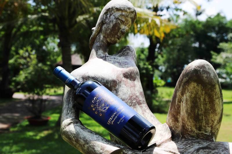 Rượu vang Argentina - Trapiche Extravaganza